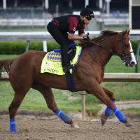 An exercise rider works out Kentucky Derby entry Justify at Churchill Downs on Wednesday.