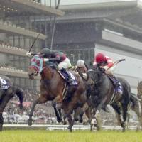 Jour Polaire digs in to win Victoria Mile