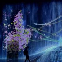 [VIDEO] Mori Building Digital Art Museum: Epson teamLab Borderless