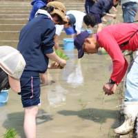 Nara visitors take part in rice planting as part of a farmhouse minpaku (private lodging services) program organized in May 2017. CITY OF NARA