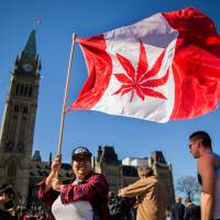 Fight brews in Canada between Prime Minister Justin Trudeau and Senate over home-grown pot