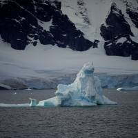 Thaw of Antarctic ice lifts up land by up to 4 cm a year, might slow sea level  rise: scientists