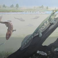 A handout photo released Thursday by the Centre of Excellence in Palaeosciences of the University of the Witwatersrand shows a full reconstruction of a Waterloo Farm, including Tutusius and Umzantsia. The discovery of two Devonian tetrapods in South Africa suggests that the evolution of these creatures from water to land could have occurred anywhere else, and not only in the tropics as was previously thought, a study that will be fully released onFriday has established. | MAGGIE NEWMAN / UNIVERSITY OF THE WITWATERSRAND / VIA AFP-JIJI