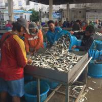 Migrant workers sort fish and seafood at a port in Samut Sakhon, Thailand, on March 25. | THOMSON REUTERS FOUNDATION / BEH LIH YI
