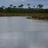 Trump's move to redefine water rule threatens wetlands banks across nation