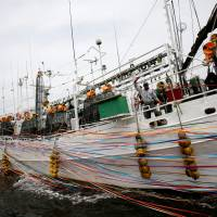 As squid season peaks, Japanese fishermen fear confrontation with North Korean boats