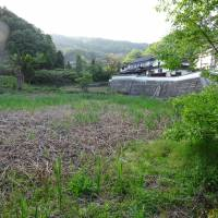 Issue of abandoned land slowing rural development in Japan
