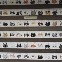 Delinquents: Mug shots of cats sent to Tokyo to live a new life in the city.   LOUISE GEORGE KITTAKA