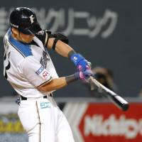The Fighters'  Taishi Ota strokes a tiebreaking single in the seventh inning against the Swallows on Friday night at Sapporo Dome. Hokkaido Nippon Ham routed Tokyo Yakult 11-4 in interleague action. | KYODO