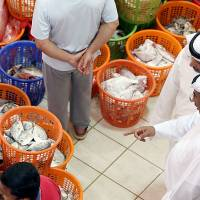 Men buy food at the Kuwait City fish market's daily auction on July 5.   AFP-JIJI