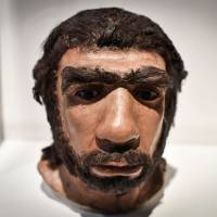 This photo taken on March 26 shows a moulding of a Neanderthal man face displayed for the Neanderthal exhibition at the Musee de l'Homme in Paris. The Neanderthal man knew how to make fire by striking stones, it was reported Thursday, according to researchers who analysed several tools from sites in France dating back 50,000 years. | AFP-JIJI