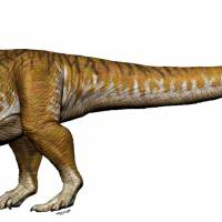 A reconstruction of an Ingentia prima from the Late Triassic (205- 210 million years ago) with a total length 8-10 meters is shown in this handout image of an artist's rendering provided Monday. | JORGE A. GONZALEZ / HANDOUT / VIA REUTERS