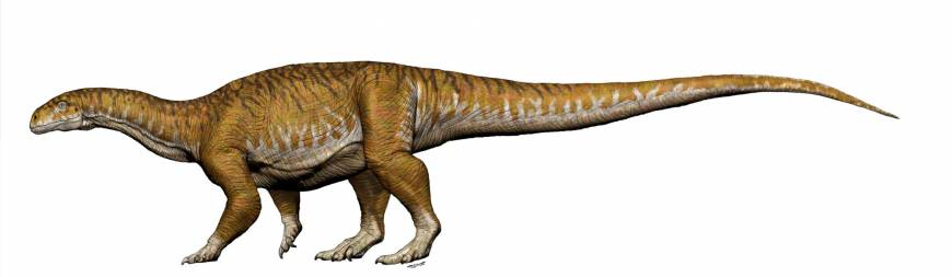 Giant dinosaur bone find in Argentina seen pointing to much earlier start of Triassic period