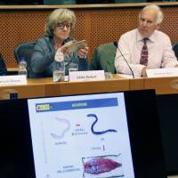 People attend a symposium about the conservation of European eels on June 10 at the European Parliament in Brussels. | KYODO