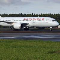 Narita International Airport shuts runway after Air Canada plane enters wrong taxiway