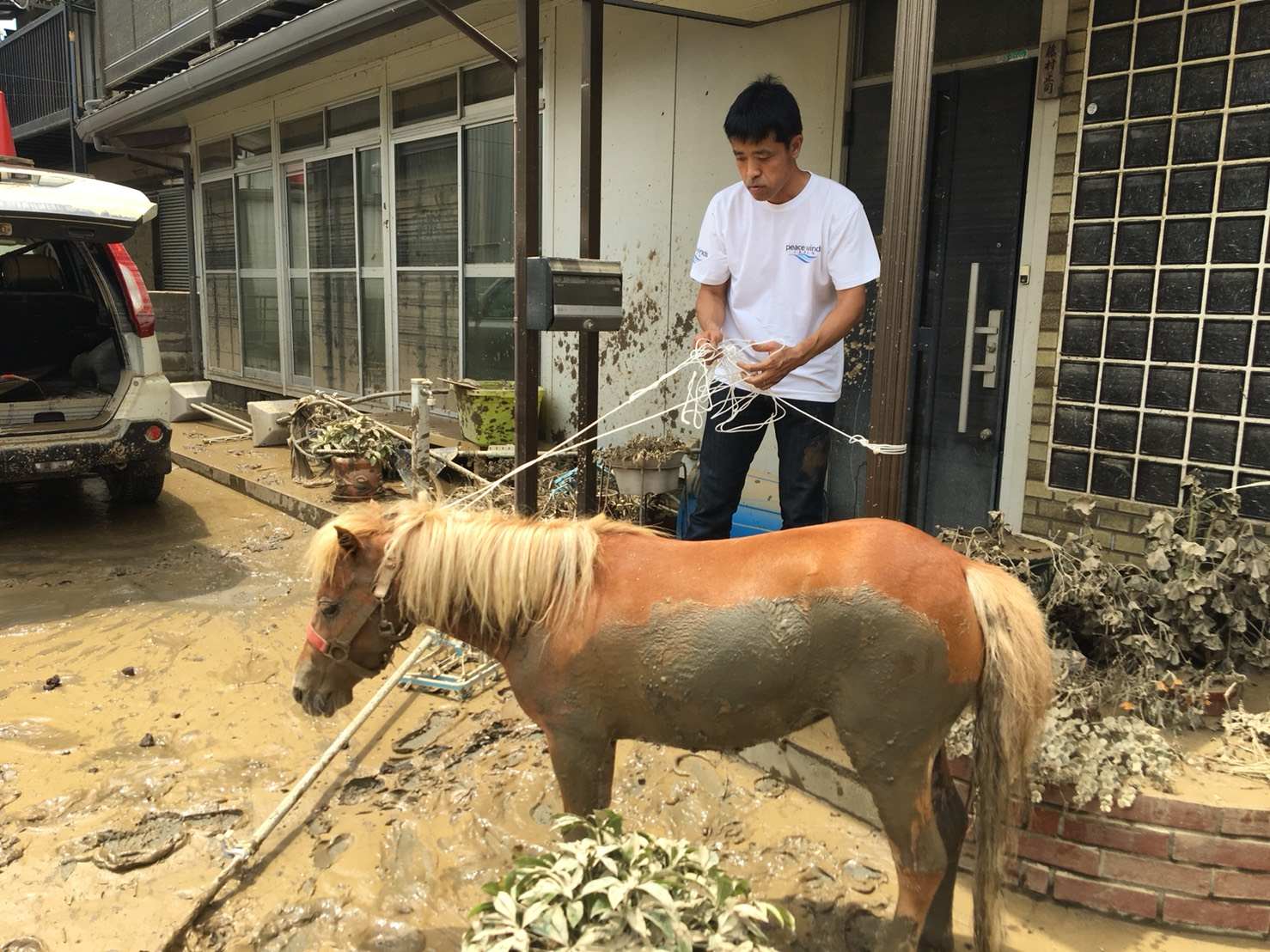Staff of Peace Winds Japan take care of Leaf, a horse who fell from the roof of a home while crews attempted to rescue her.   COURTESTY OF PEACE WINDS JAPAN, ASIA PACIFIC ALLIANCE JAPAN AND CIVIC FORCE