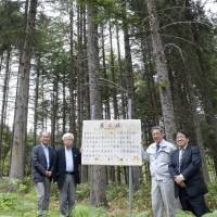 Search begins for commemorative trees from '64 Olympics ahead of 2020 Tokyo Games