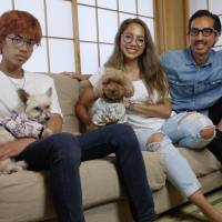After abandonment twice and years of neglect, toy poodle Manto finds a home in Tokyo