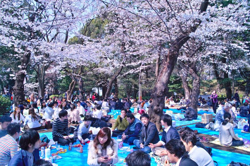 A late addition to urban culture, parks say a lot about life in Japan