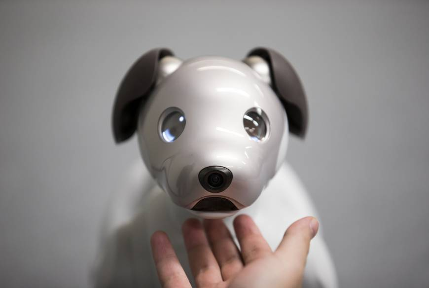 Sony to launch revamped Aibo robot dog in U.S.