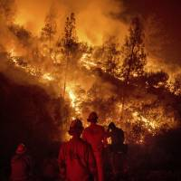 Firefighters monitor a backfire while battling the Ranch Fire, part of the Mendocino Complex Fire, on Tuesday near Ladoga, California. | AP