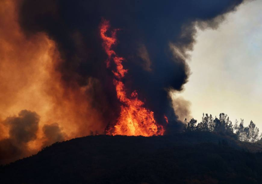 Climate change threatens 'major transformation' to Earth's ecosystems: study