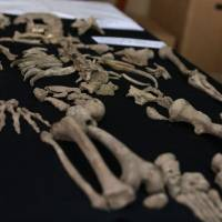 A human skeleton recovered at the Chavin de Huantar archaeological site, 462 km north of Lima, where archaeologists using small robots equipped with micro cameras found the intact burial of a person and pottery, is seen Monday. | PERUVIAN MINISTRY OF CULTURE / VIA AFP-JIJI
