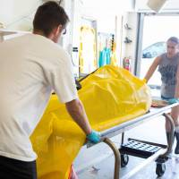 In this image released by the Mote Marine Laboratory in Sarasota, lab staffers remove the carcasse of a dolphin on Wednesday, reportedly a victim of Florida's red tide. | CONOR GOULDING / MOTE MARINE LABORATORY / VIA AFP-JIJI