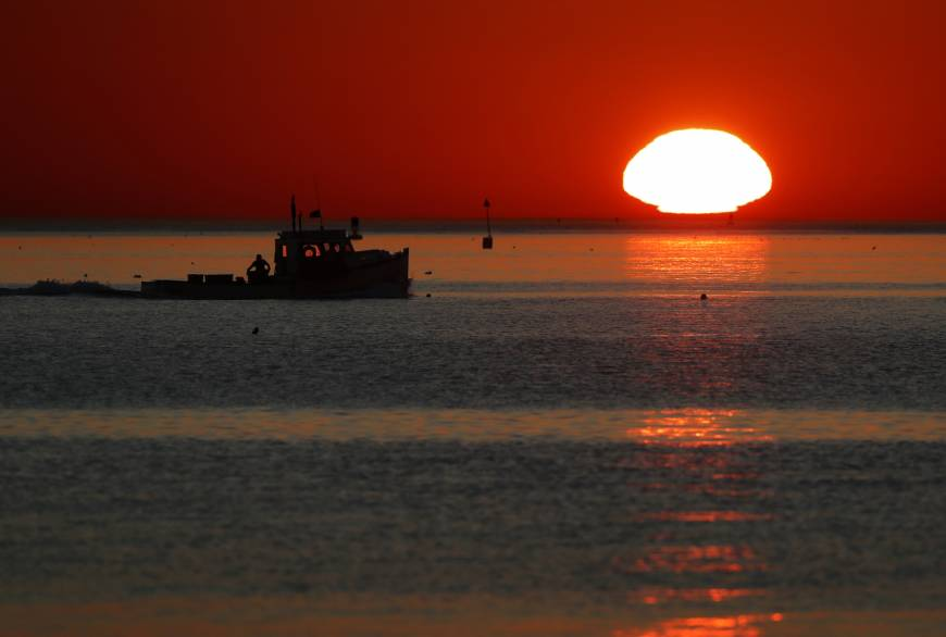 Waters off New England in midst of record year for warmth