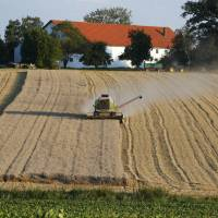 Wheat is harvested in Bieburg, Germany, on July 27.   BLOOMBERG