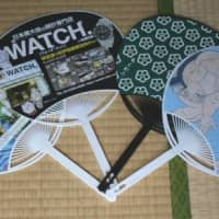 Big (only) in Japan? Free fans