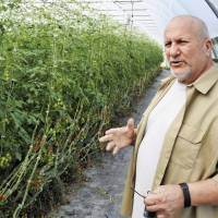 Gary Wozniak, head of the nonprofit organization RecoveryPark, oversees an urban farm project on the outskirts of Detroit. | KYODO
