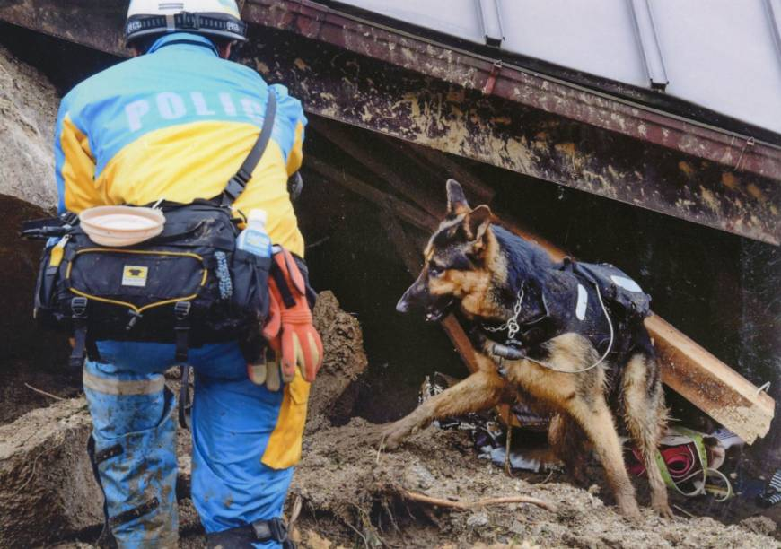 Rescue dogs equipped with cameras to search for survivors in western Japan's rain-hit areas