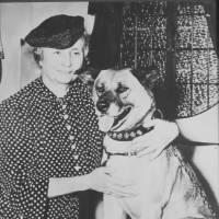 Tokyo exhibition to portray bond between Helen Keller and Akita dogs