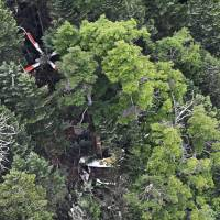 All nine crew members of this helicopter, which crashed Friday in Nakanojo, Gunma Prefecture, were confirmed dead Saturday. In this photo taken Friday afternoon, damaged trees at the crash site can be seen. | KYODO