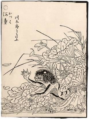 An illustration of a kappa by Toriyama Sekien (1712-88).