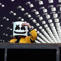 Beats international: Marshmello delivered a slew of original tracks during his set as well as some old favorites such as 'Mr. Brightside' by The Killers. | © SUMMER SONIC ALL RIGHTS RESERVED