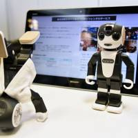 Sharp Corp.'s small humanoid robot, named RoBoHon, will offer sightseeing guidance in Kyoto starting Sept. 22. | KYODO