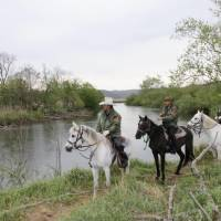 Volunteers on horses patrol the Kushiro Marshland in Hokkaido in May. | KYODO