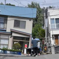 Hokkaido cat owners search for pets that fled during quake