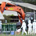 Workers in antibiotic suits disinfect a pig farm in the city of Gifu on Sept. 9 following an outbreak of swine fever.