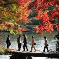Rikugien Gardens spans around 89,000 square meters and is a popular place to visit during autumn because of its charming scenery. | TCVB