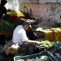 A vendor sorts parsley at a vegetable and fruit stall at a street market in Caracas Monday. | REUTERS