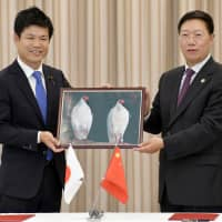 Japanese and Chinese officials pose for a photo Wednesday at Narita airport, holding a photograph of a pair of crested ibises that were given by China as a gift. | KYODO
