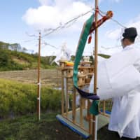 A priest offers thanks for this year's harvest and hopes for recovery Tuesday in front of rice fields in Atsuma, Hokkaido, which was hit by a powerful earthquake last month. Slopes that became bare due to landslides are seen in the background. | KYODO
