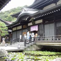 'Water of Beauty': The exterior of Gosho no Yu, one of seven public baths in Kinosaki Onsen. | DAVEY YOUNG