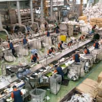 Workers with disabilities sorting foam food trays at FP Corp.'s Kanto Recycling Plant in Yachiyo, Ibaraki Prefecture.   FP CORP.