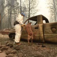 Hundreds still missing as National Guard joins search for victims of California's deadliest wildfire