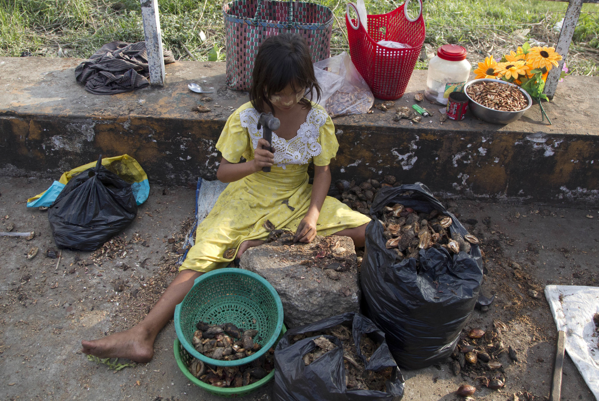A girl uses a hammer to crack open shells and sell the seeds as snacks in Yangon on Thursday.   AP