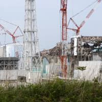 Japan's nuclear industry growing but likely to miss government's 2030 target
